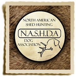 About NASHDA